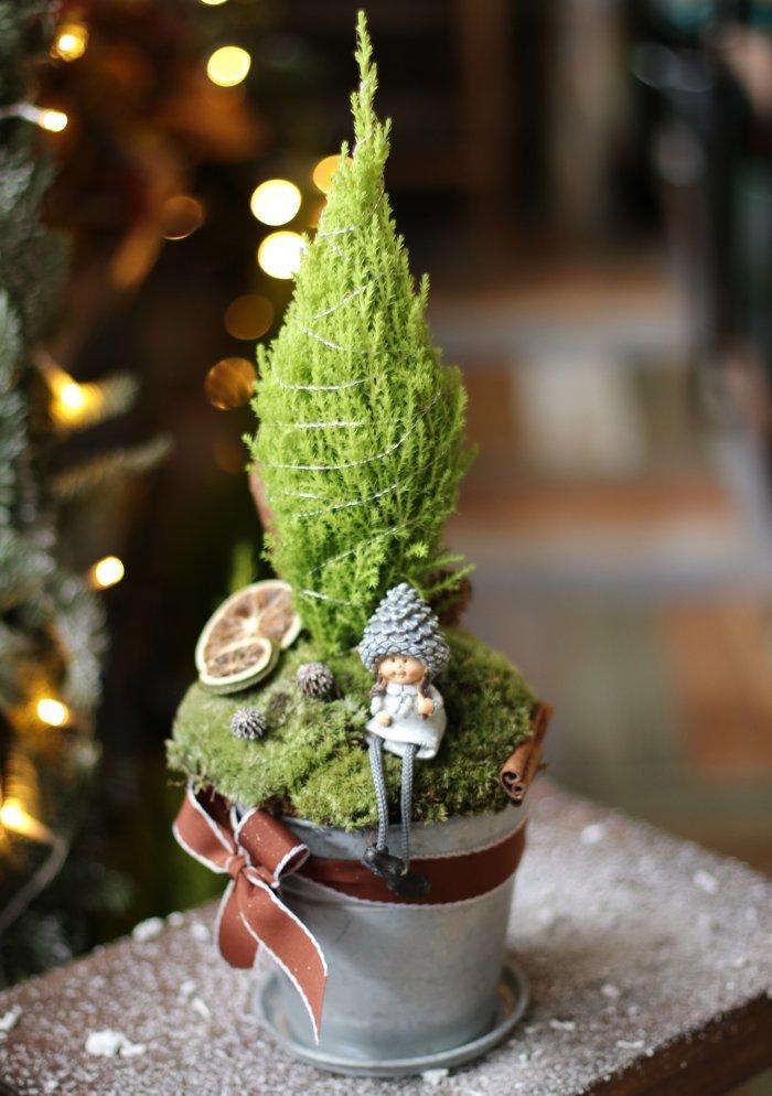 Рождественская композиция с кипарисом